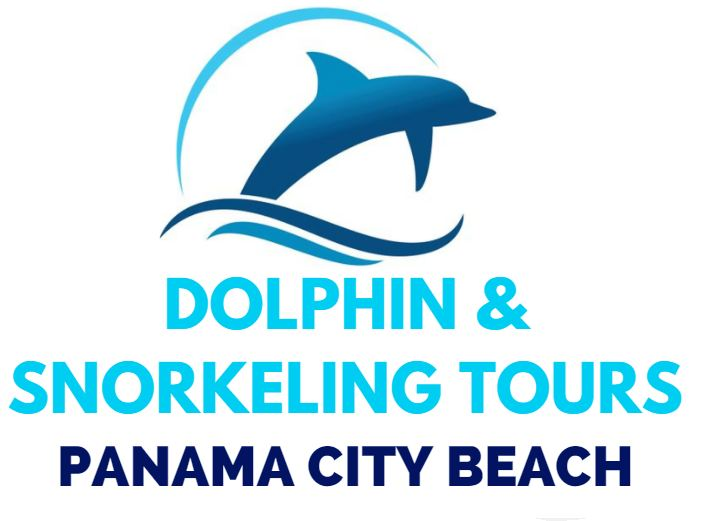 Panama City Beach Dolphin Tours